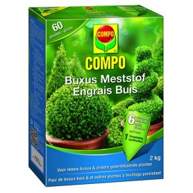 Compo Buxus Meststof 2 kg