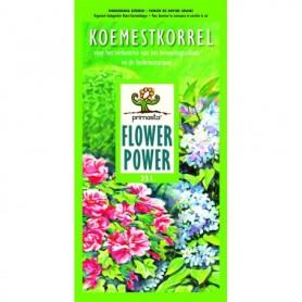 Koemestkorrel Flower 10 liter