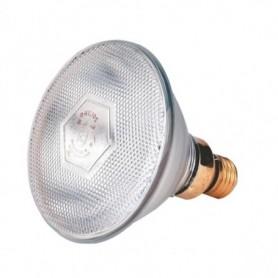 Biggenlamp wit Philips 100 w