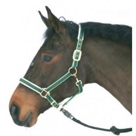 Halster Paard Luxe nylon/leer Groen 1 - Pony
