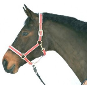 Halster Paard Luxe nylon/leer Rood 4 - Extra full