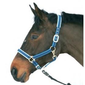 Halster Paard Luxe nylon/leer Blauw 4 - Extra full