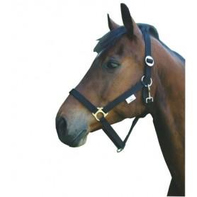 Halster paard nylon Zwart Pony