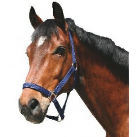 Halster paard nylon Blauw Koudbloed