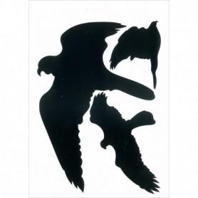 PICTO Vogels zwart 3 stuks per vel