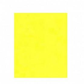 Kantoor Papier A4 160gr 25 vel geel