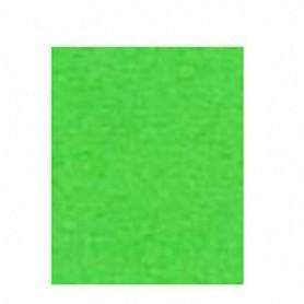 Kantoor Papier A4 160gr 25 vel groen